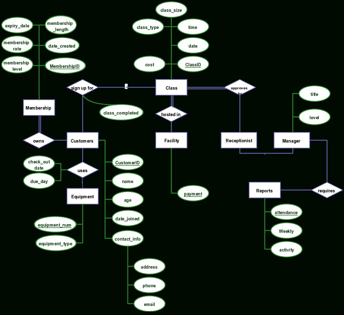 New Gym Management Program With Attributes Described On Er Diagram regarding Dbms Er Diagram Examples Pdf