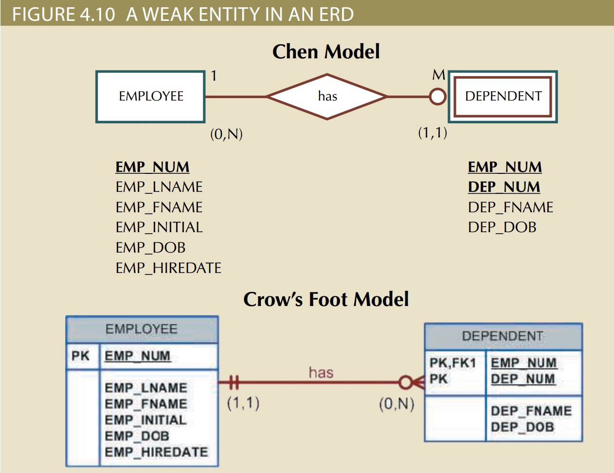 Chapter4 Entity Relationship Modeling – Technote within Strong And Weak Entity In Er Diagram