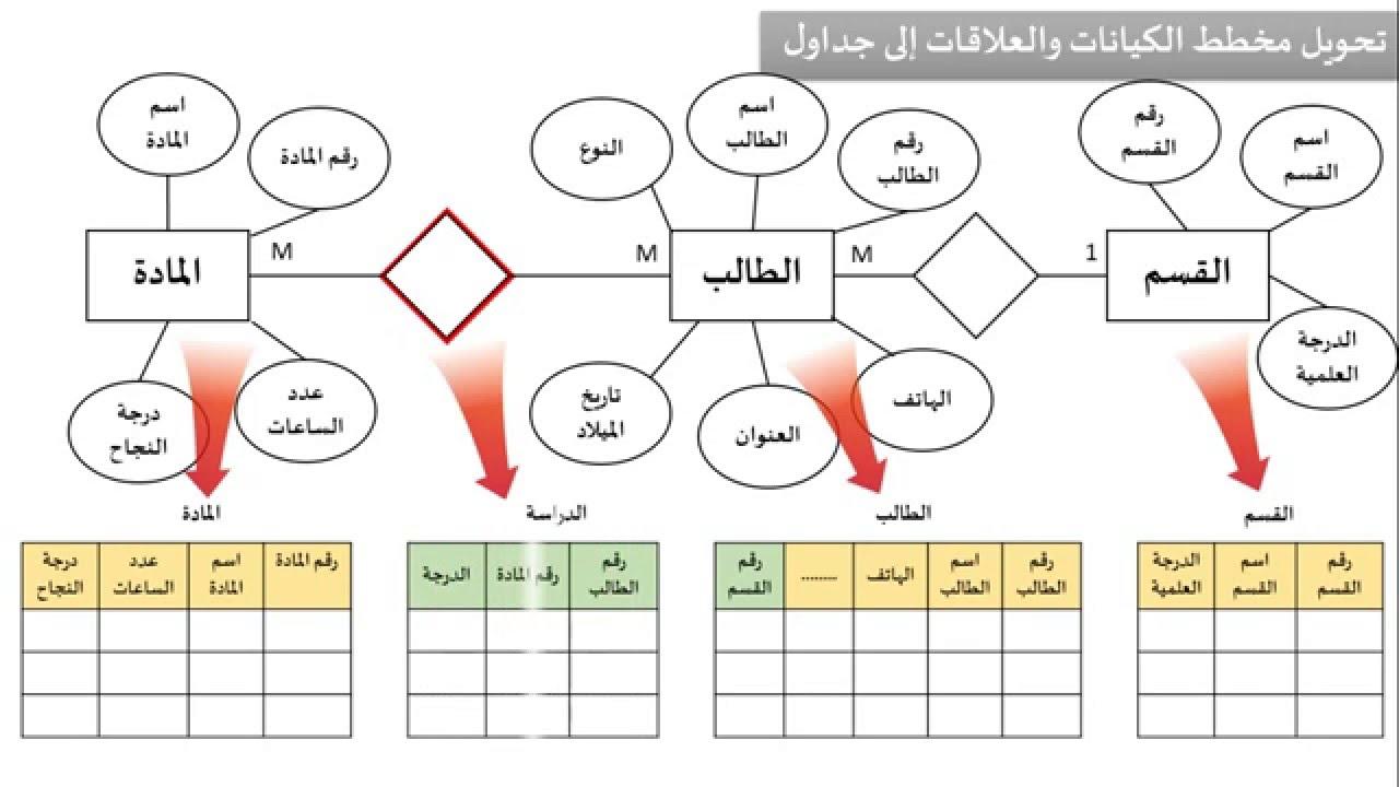الدرس السادس : بناء مخطط الكيانات والعلاقات Entity Relationship Diagram within Entity Relationship Diagram شرح