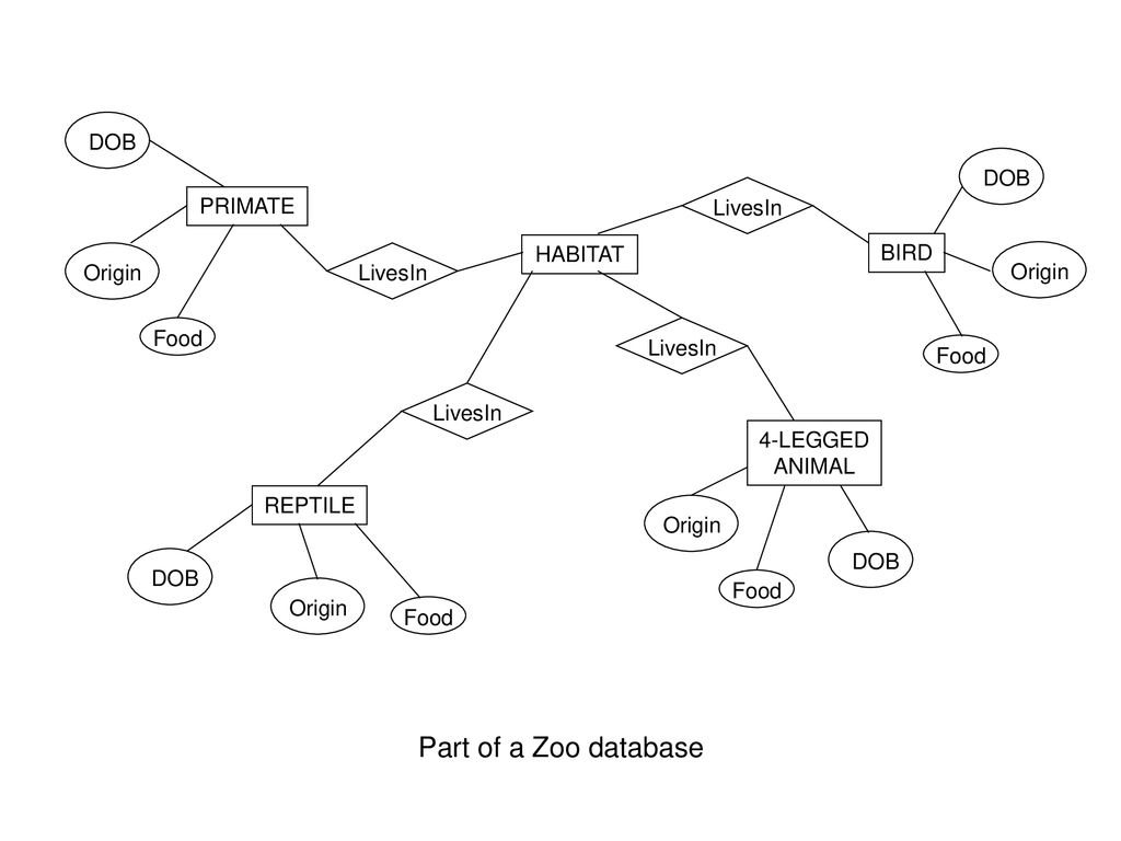 Entity Relationship Diagrams - Ppt Download with Er Diagram For Zoo Management System