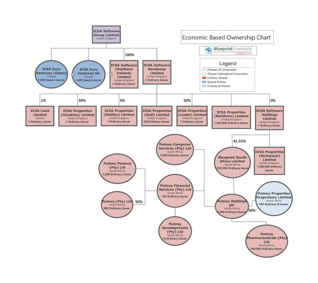 Examples Of Organizational Charts For Business | Diligent with regard to Entity Chart