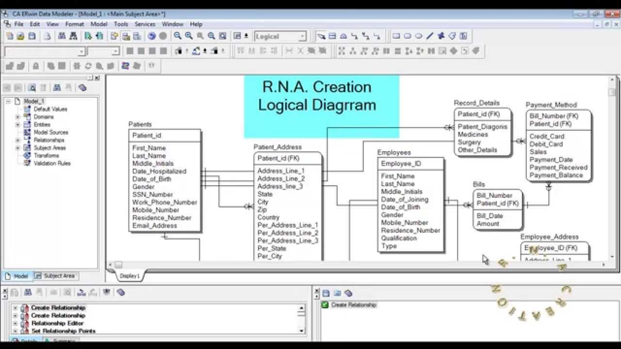 Logical Model - Hospital System - Erwin Data Modeler in Erwin Model