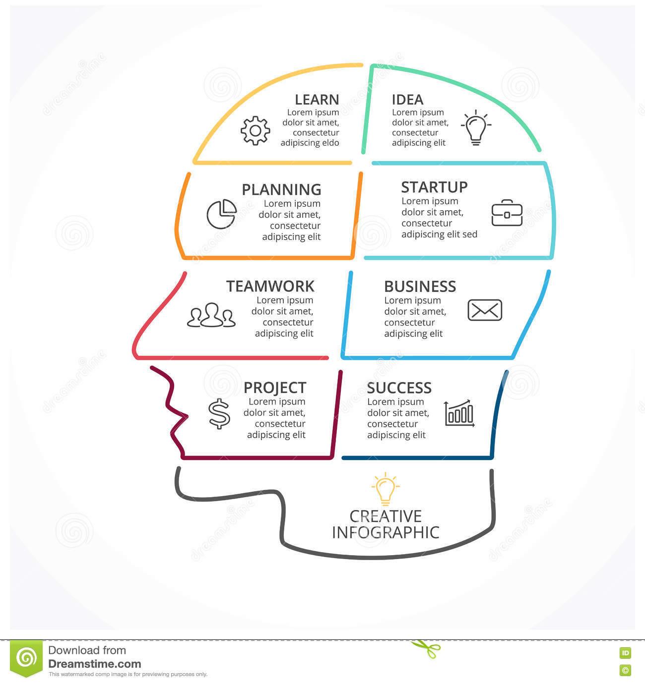 Wektorowy Móżdżkowy Liniowy Infographic Ludzkiej Głowy for Ed Diagram