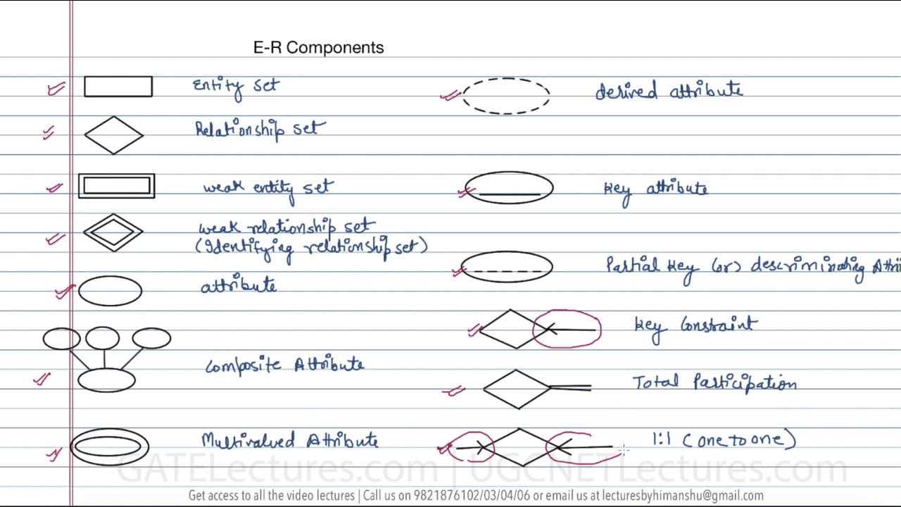 12 Components In Er Diagram with Er Diagram Notations In Dbms