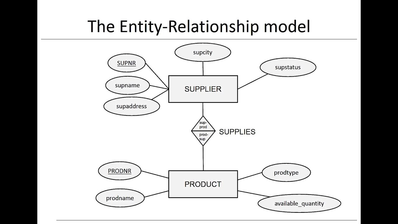 Chapter 3: Data Models - Er Model with How To Draw Er Diagram Youtube