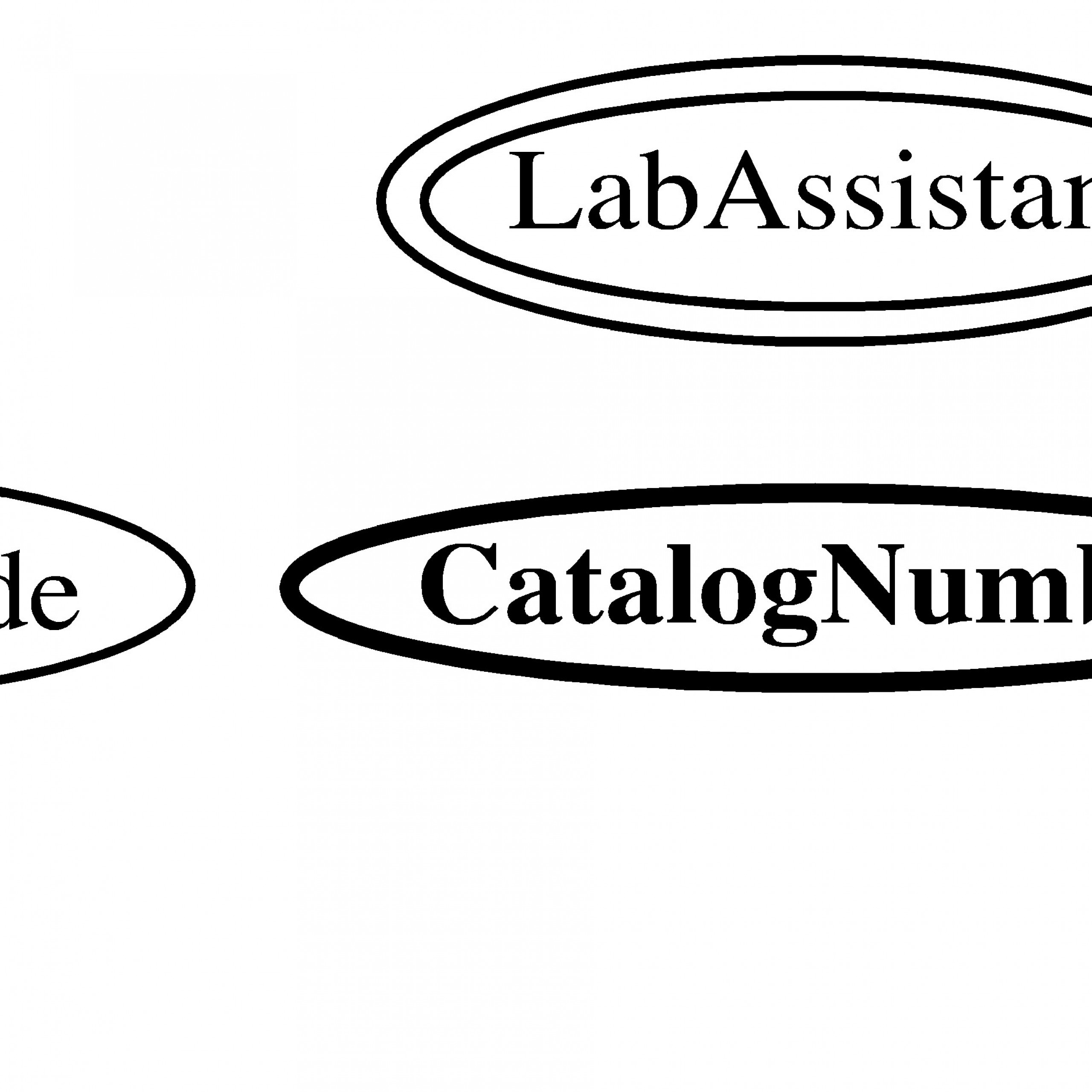 Entity-Relationship Model within Double Line In Er Diagram