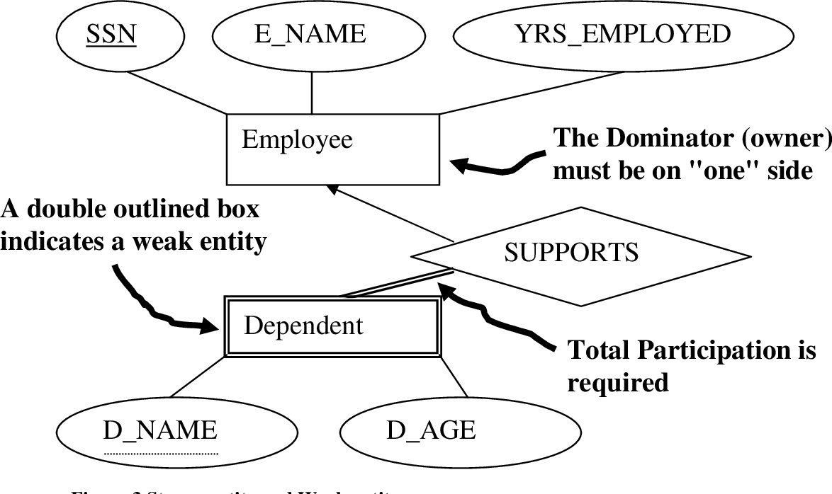 Figure 1 From The Entity-Relationship (Er) Model | Semantic intended for Er Diagram Double Circle