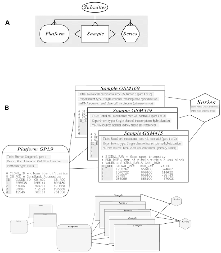 Geo Schema And Example. (A) The Entity-Relationship Diagram with Database Relationship Diagram