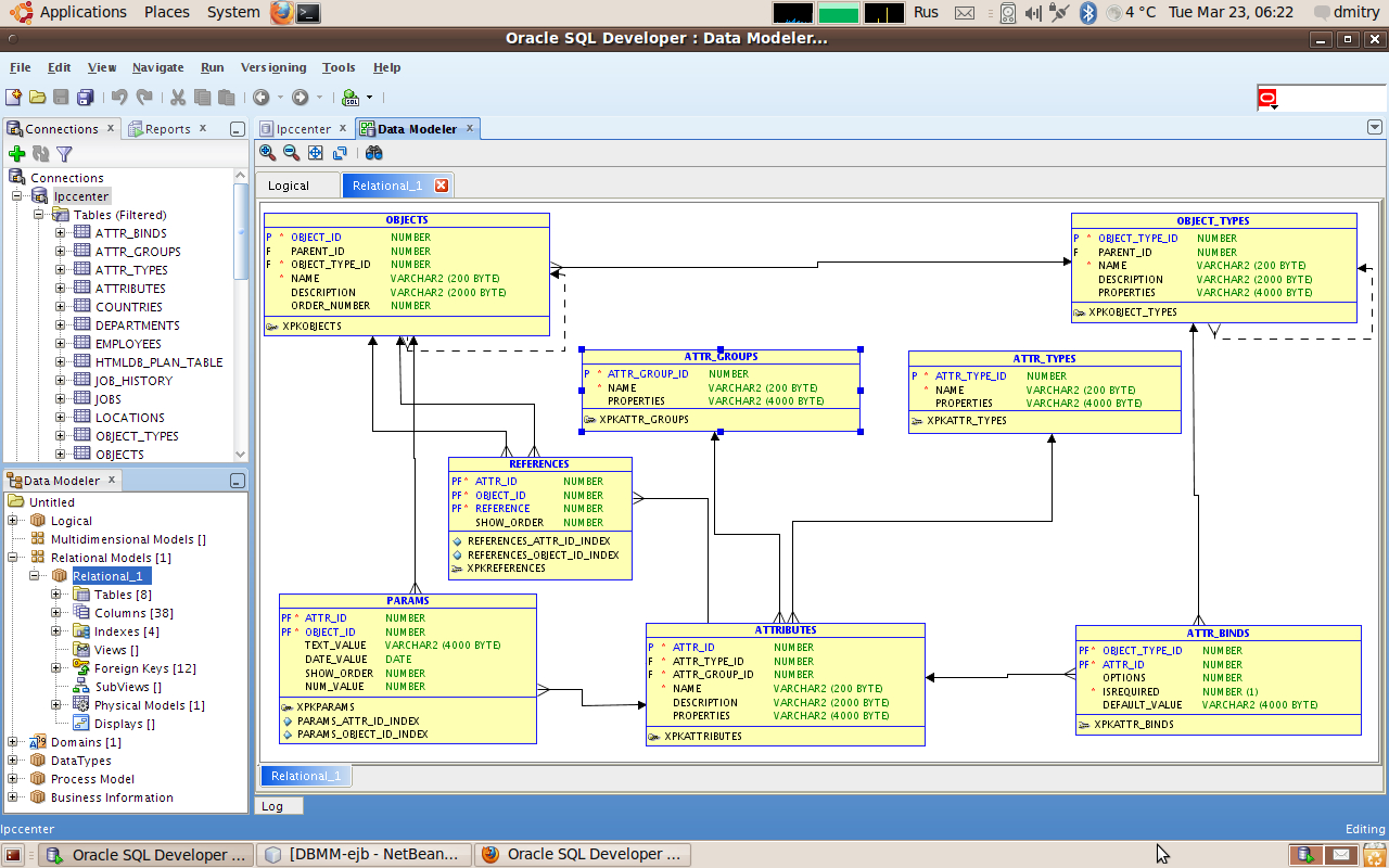 Oracle Sql Developer 2.1.1, Data Modeler Viewer Plugin inside Er Modeler